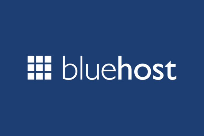 Bluehost Review: Is Bluehost the best web hosting company globally?
